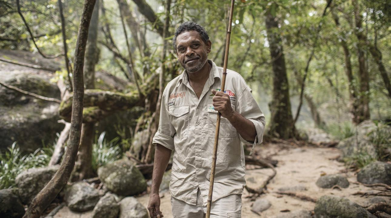 Local Indigenous guide