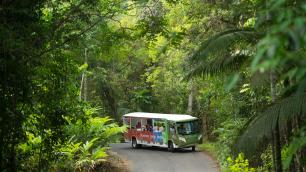 Mossman Gorge Shuttle