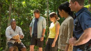 Guide showing plant foliage to a tourist group